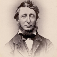 William Muller's picture